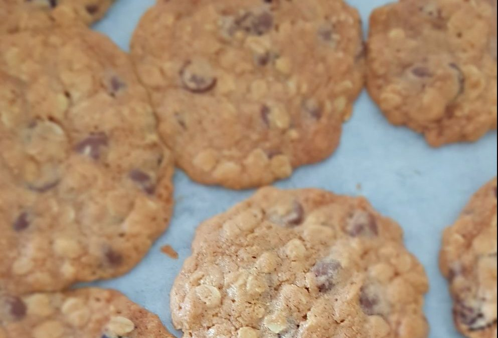 Cranberry, Choc Chip & Oat Cookies